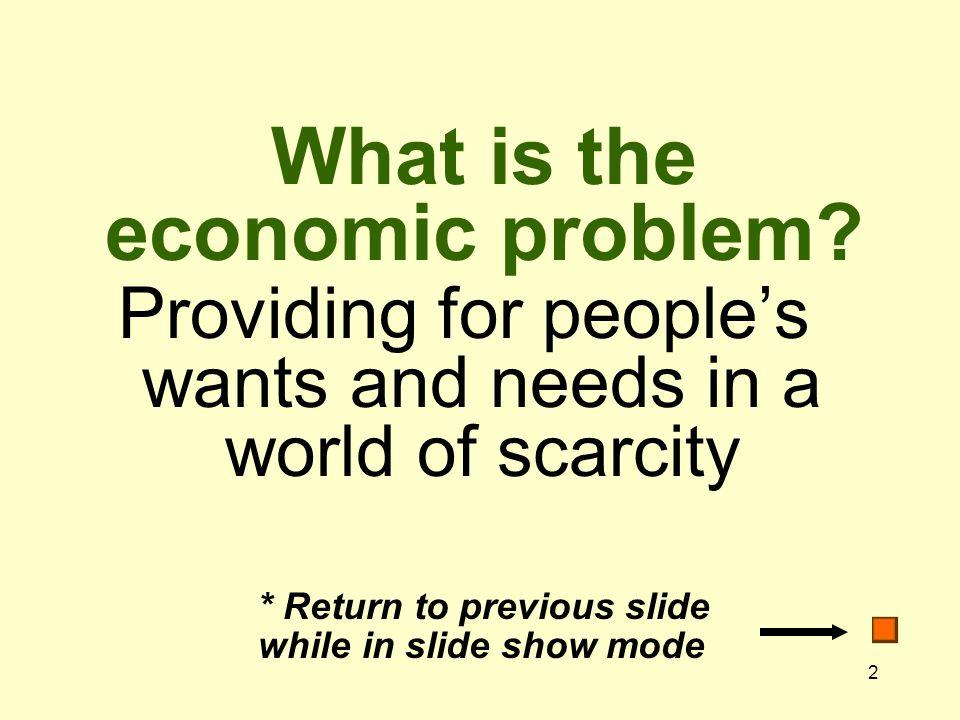 13 What is economics.