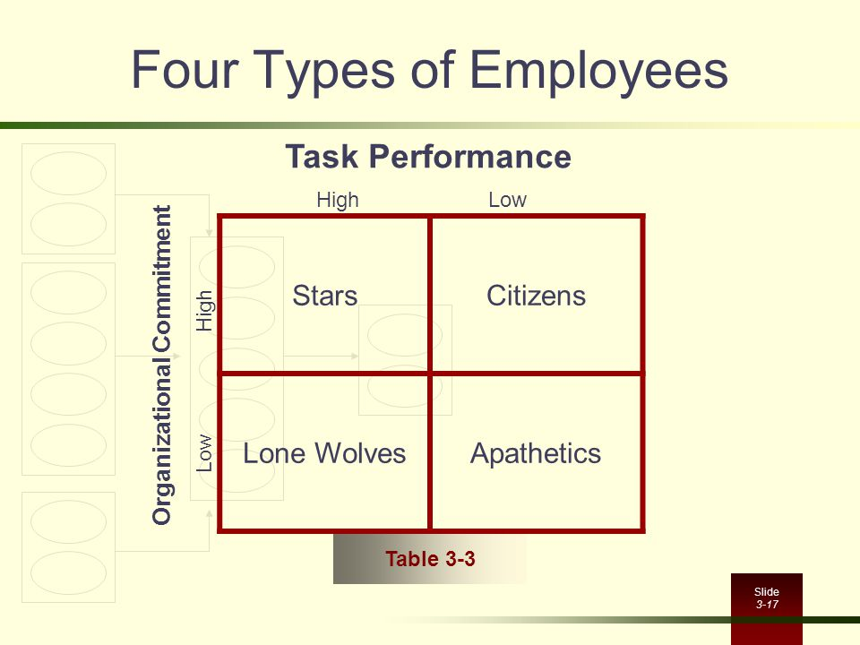 Slide 3-17 Four Types of Employees StarsCitizens Lone WolvesApathetics Task Performance Organizational Commitment HighLow Low High Table 3-3