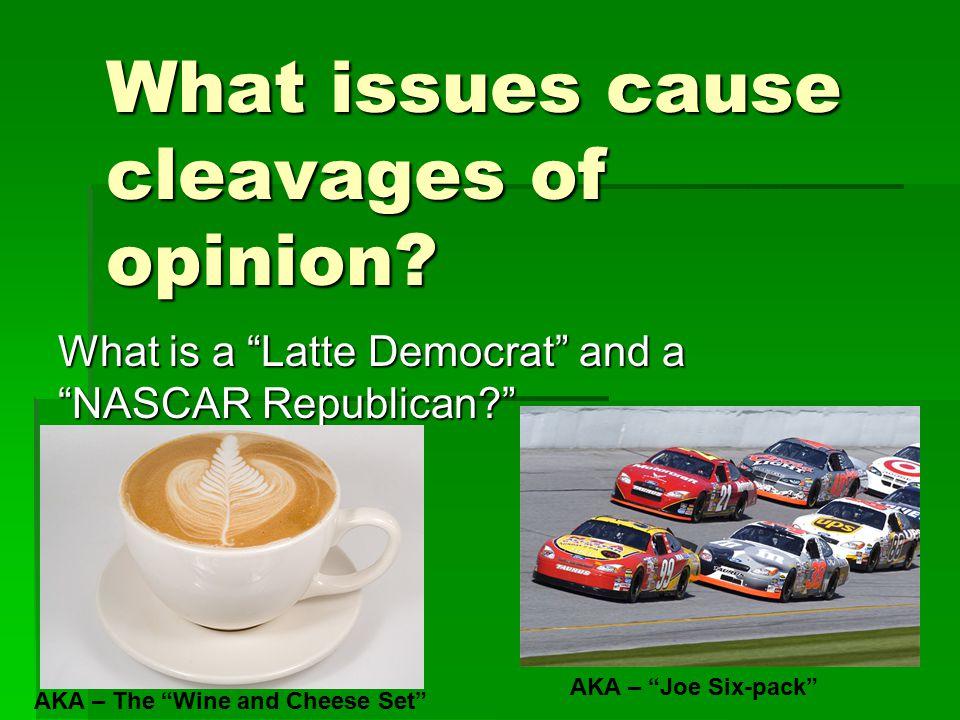 What issues cause cleavages of opinion.