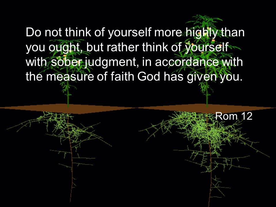 Do not think of yourself more highly than you ought, but rather think of yourself with sober judgment, in accordance with the measure of faith God has given you.