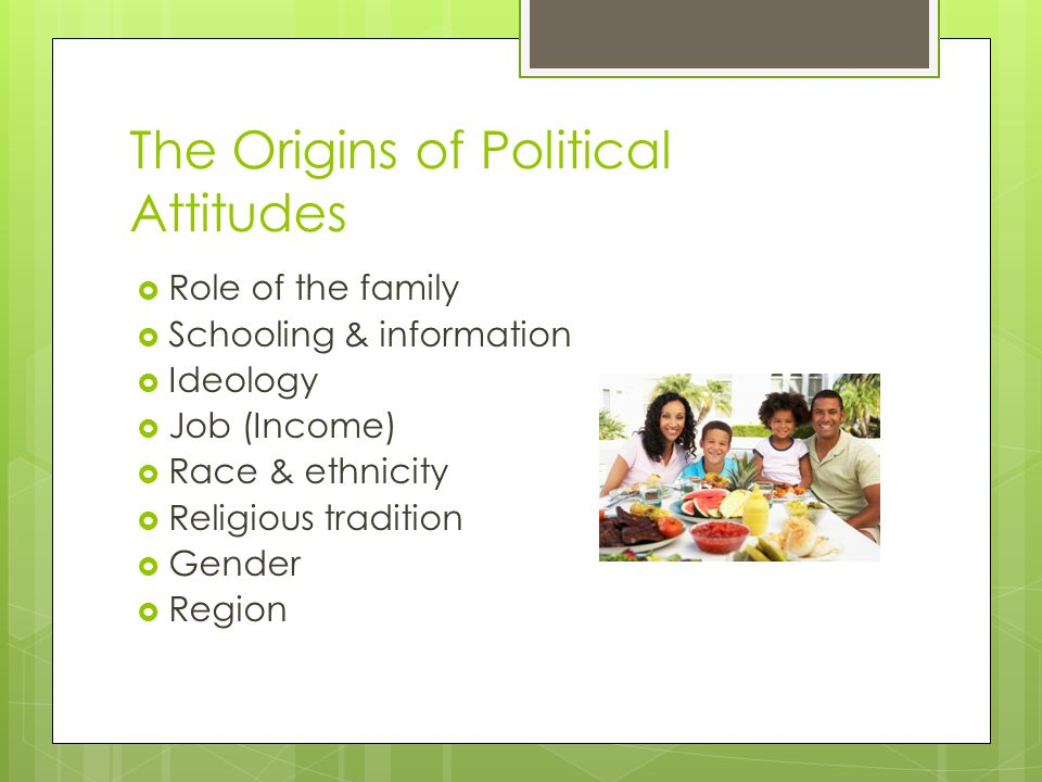 The Origins of Political Attitudes  Role of the family  Schooling & information  Ideology  Job (Income)  Race & ethnicity  Religious tradition  Gender  Region