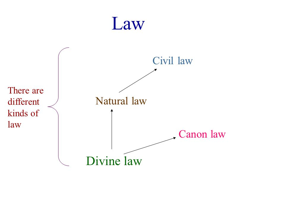 Law Divine law Natural law Civil law Canon law There are different kinds of law