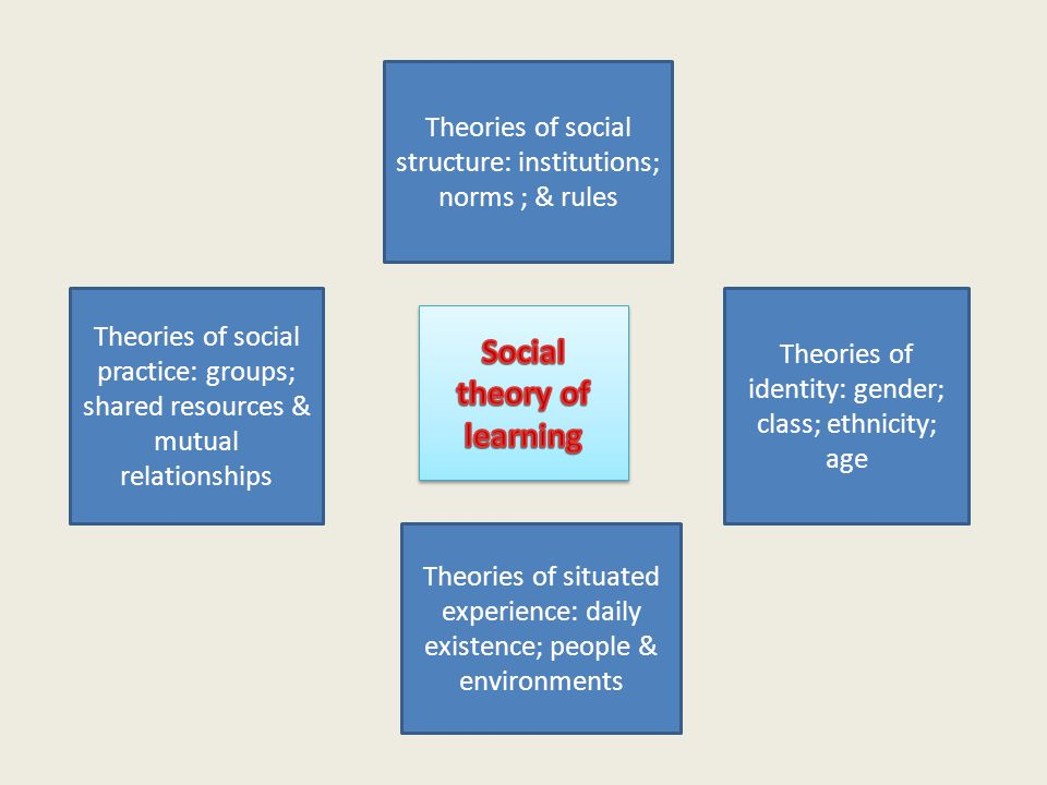 Theories of identity: gender; class; ethnicity; age Theories of social structure: institutions; norms ; & rules Theories of social practice: groups; shared resources & mutual relationships Theories of situated experience: daily existence; people & environments