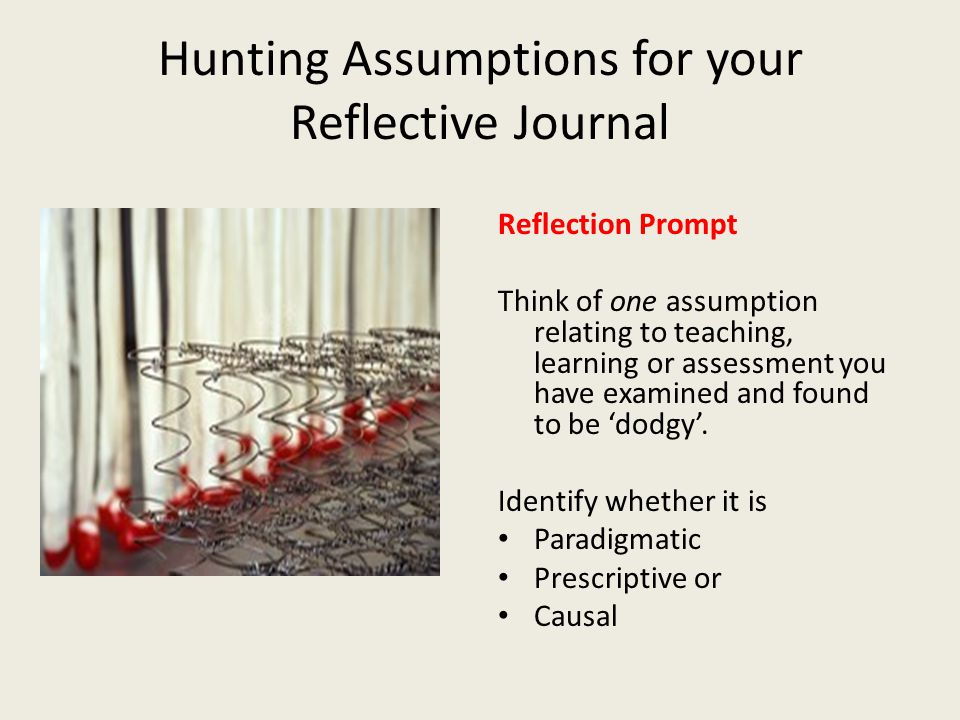 Hunting Assumptions for your Reflective Journal Reflection Prompt Think of one assumption relating to teaching, learning or assessment you have examined and found to be 'dodgy'.