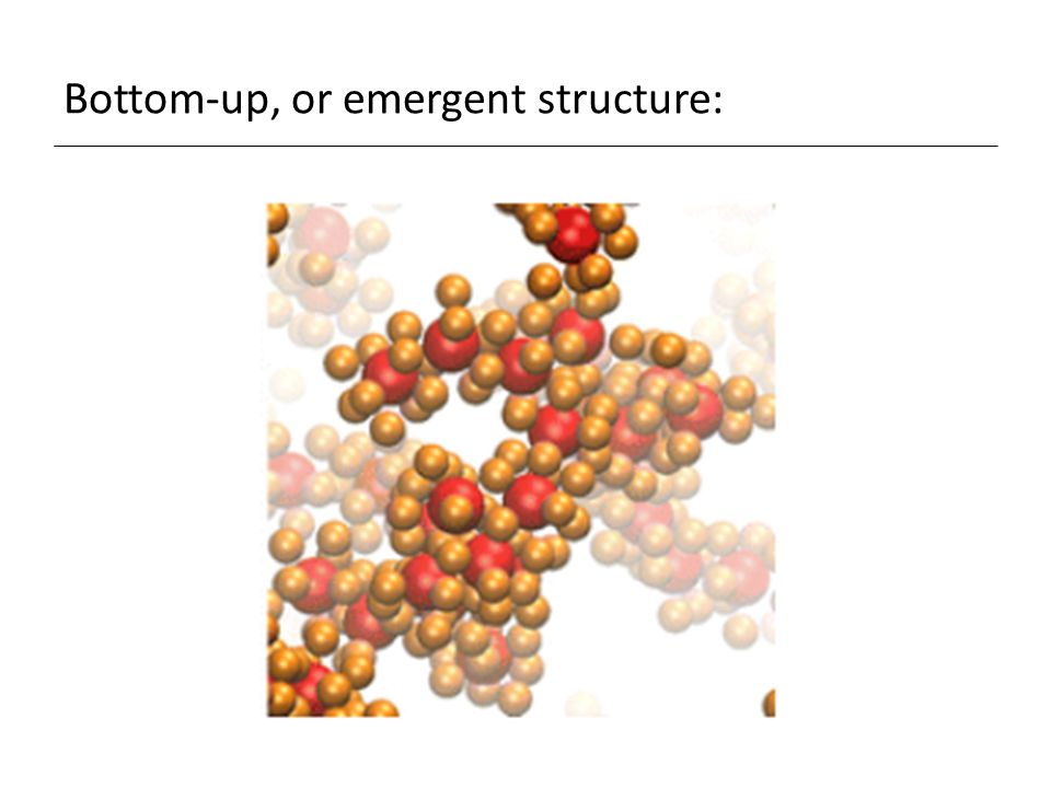 Bottom-up, or emergent structure: