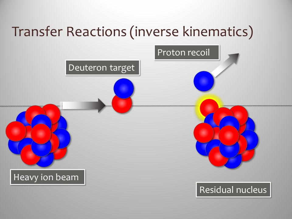 Transfer Reactions (inverse kinematics) Heavy ion beam Deuteron target Residual nucleus Proton recoil