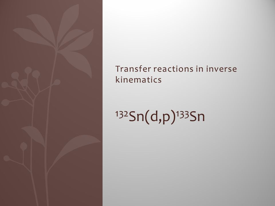 Transfer reactions in inverse kinematics 132 Sn(d,p) 133 Sn