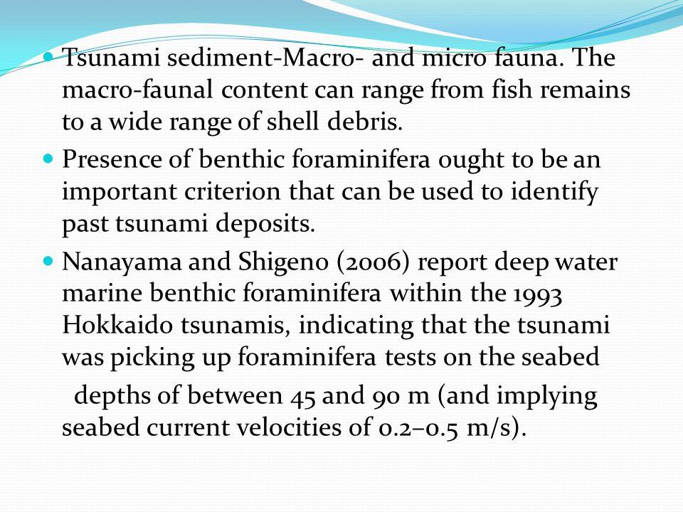 Tsunami sediment-Macro- and micro fauna.