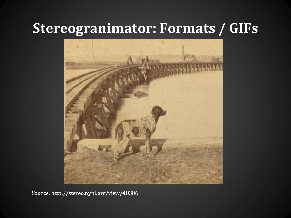 Stereogranimator: Formats / GIFs Source: http://stereo.nypl.org/view/40306