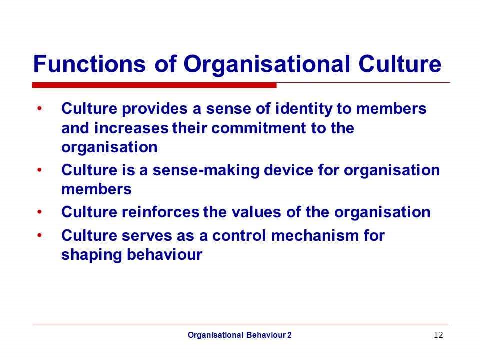 12 Functions of Organisational Culture Culture provides a sense of identity to members and increases their commitment to the organisation Culture is a sense-making device for organisation members Culture reinforces the values of the organisation Culture serves as a control mechanism for shaping behaviour Organisational Behaviour 2