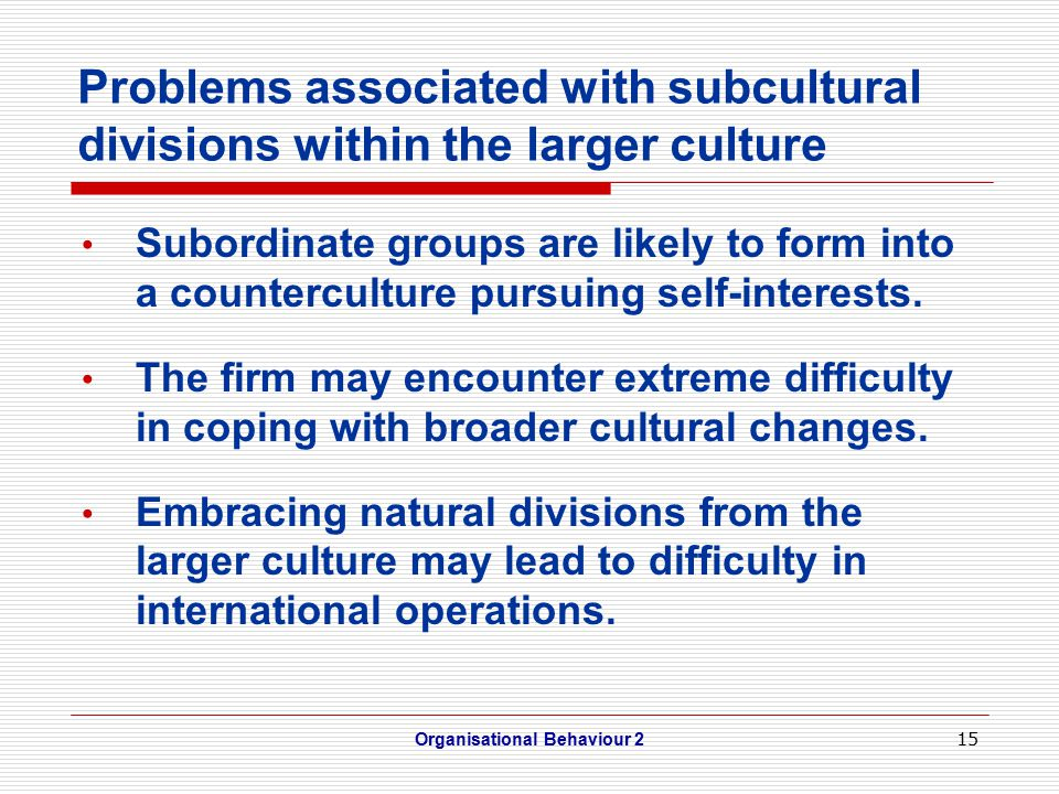 15 Problems associated with subcultural divisions within the larger culture Subordinate groups are likely to form into a counterculture pursuing self-interests.