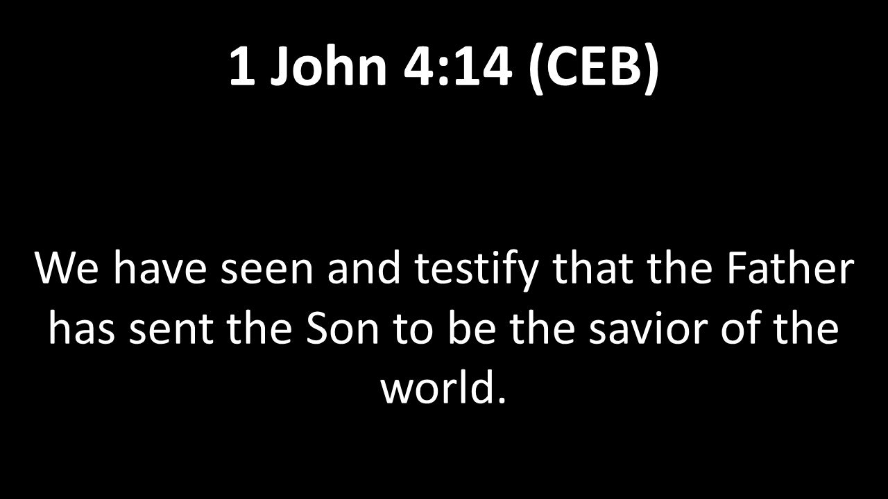 We have seen and testify that the Father has sent the Son to be the savior of the world. 1 John 4:14 (CEB)