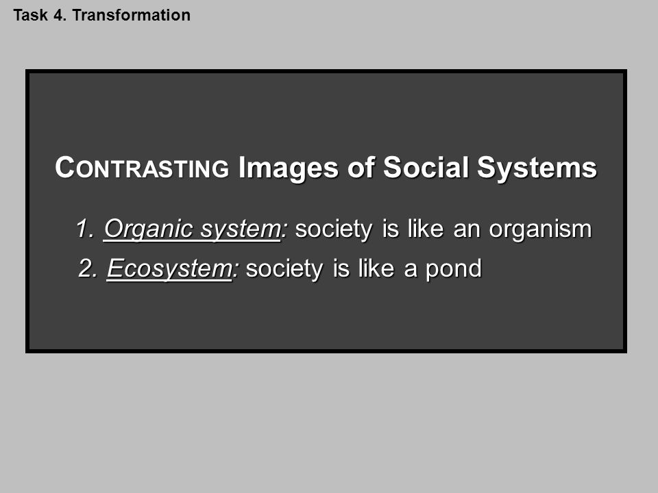 C ONTRASTING Images of Social Systems 1.Organic system: society is like an organism 2.Ecosystem: society is like a pond Task 4.