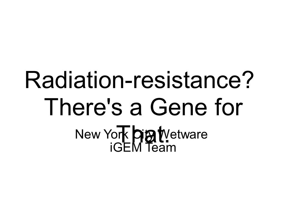 Radiation-resistance There s a Gene for That. New York City Wetware iGEM Team