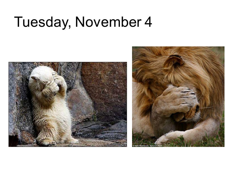 Tuesday, November 4