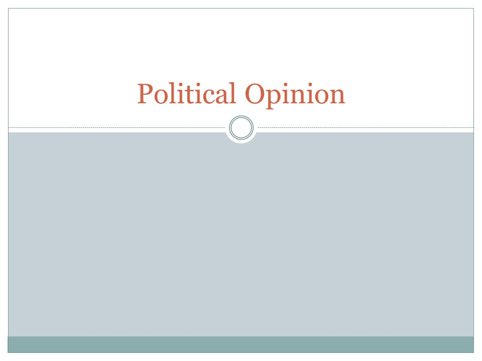 Political Opinion