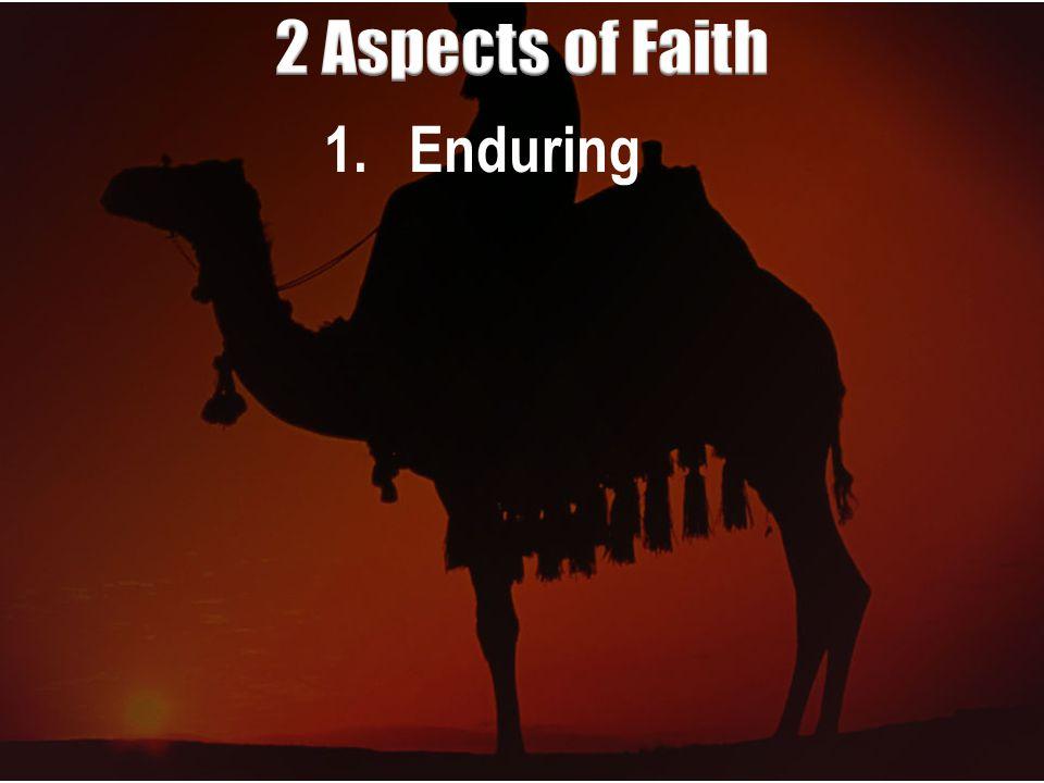 1.Enduring