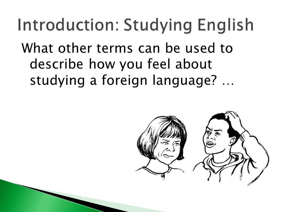 What other terms can be used to describe how you feel about studying a foreign language? …