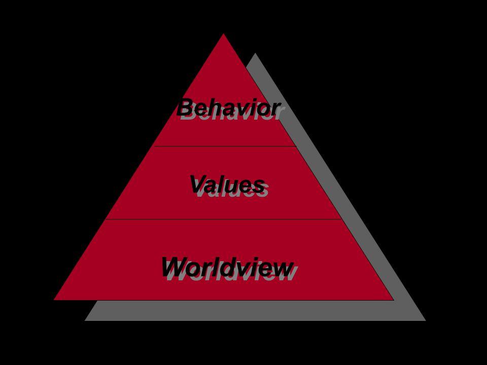 Worldview Values Behavior