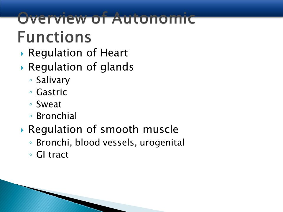 Overview of Autonomic Functions  Regulation of Heart  Regulation of glands ◦ Salivary ◦ Gastric ◦ Sweat ◦ Bronchial  Regulation of smooth muscle ◦ Bronchi, blood vessels, urogenital ◦ GI tract