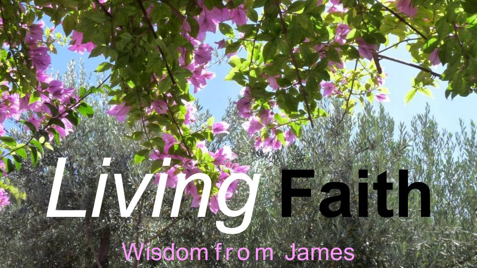 Living Faith Wisdom from James