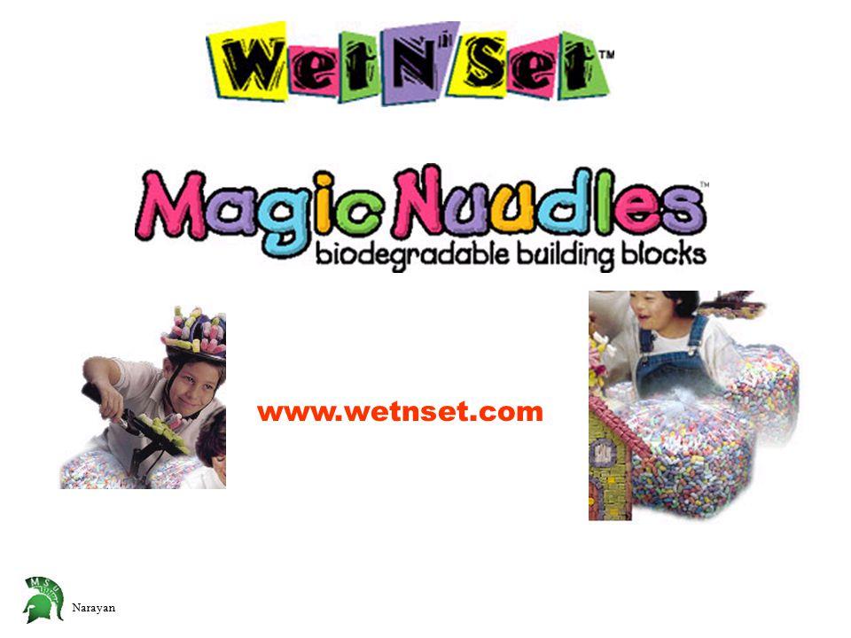 www.wetnset.com