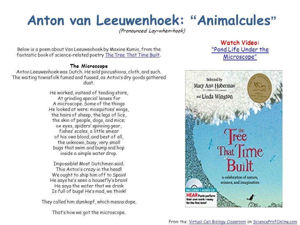 Anton van Leeuwenhoek: Animalcules (Pronounced Lay-when-hook) Below is a poem about Van Leeuwenhoek by Maxine Kumin, from the fantastic book of science-related poetry The Tree That Time Built.The Tree That Time Built The Microscope Anton Leeuwenhoek was Dutch.