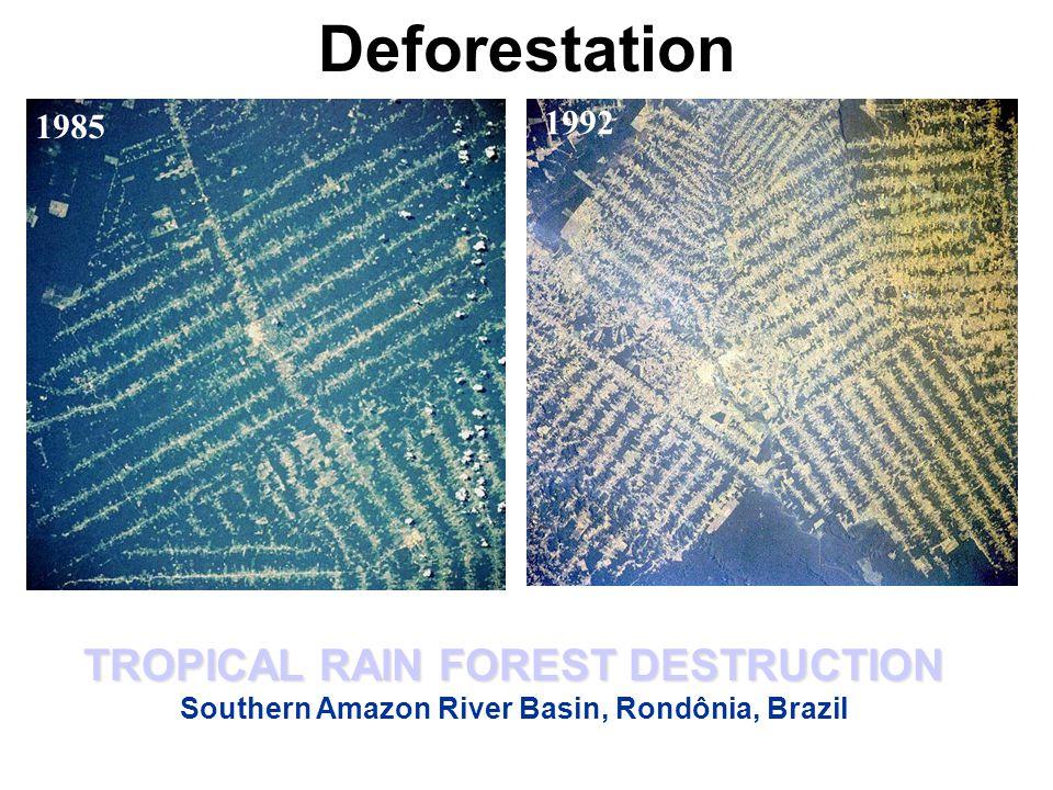 Deforestation TROPICAL RAIN FOREST DESTRUCTION Southern Amazon River Basin, Rondônia, Brazil 1985 1992