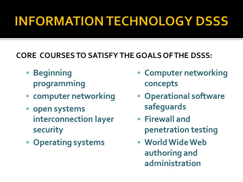 CORE COURSES TO SATISFY THE GOALS OF THE DSSS: