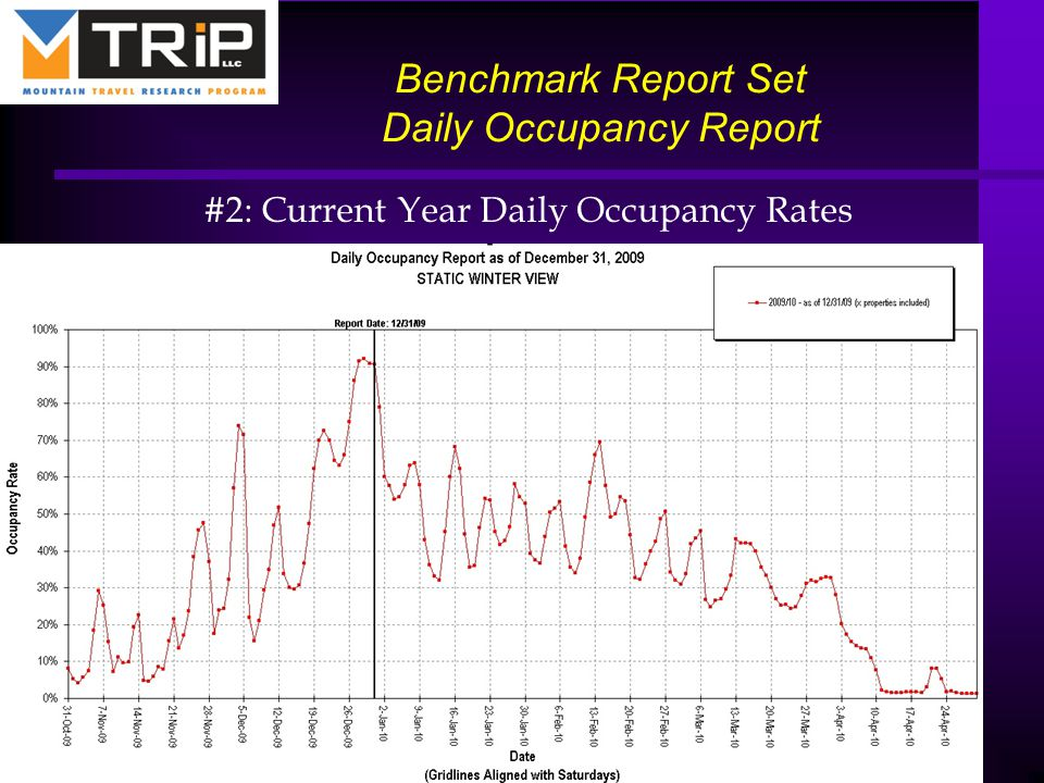 Benchmark Report Set Daily Occupancy Report #2: Current Year Daily Occupancy Rates 25