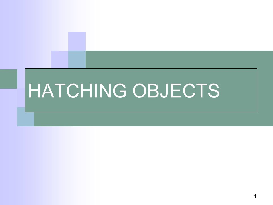 1 HATCHING OBJECTS