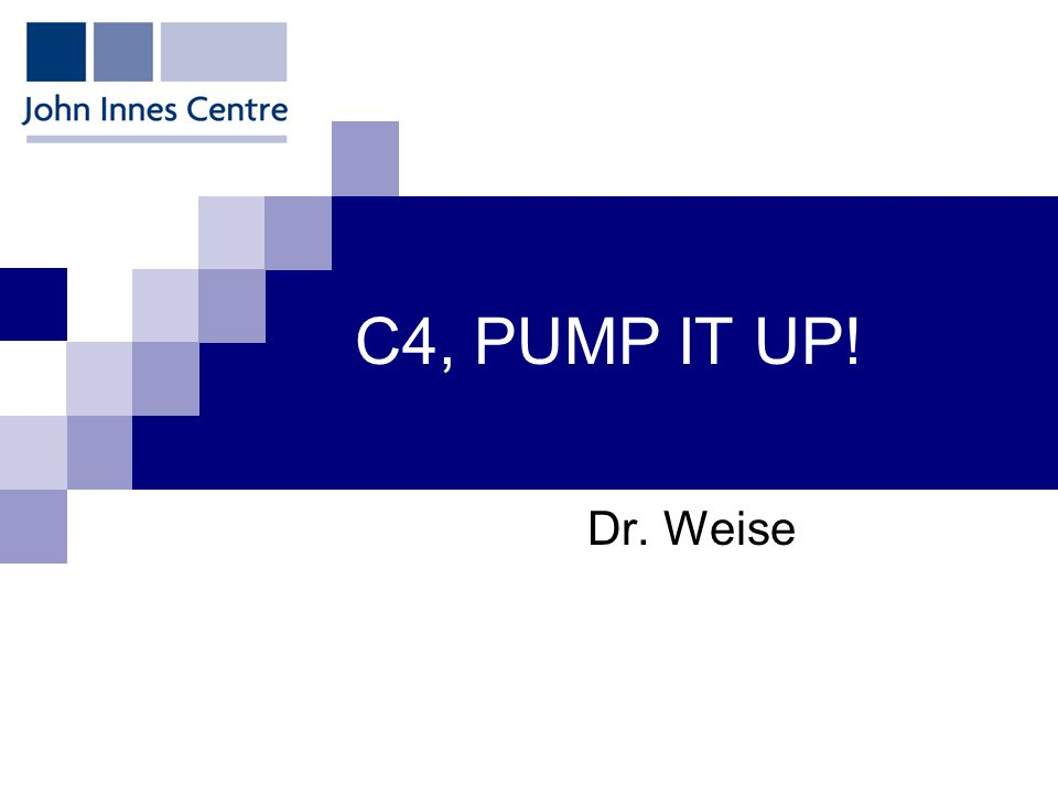 C4, PUMP IT UP! Dr. Weise