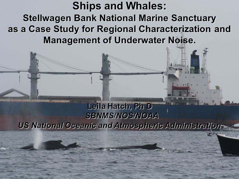 Ships and Whales: Stellwagen Bank National Marine Sanctuary as a Case Study for Regional Characterization and Management of Underwater Noise.