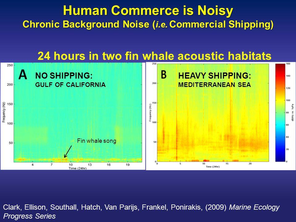 Human Commerce is Noisy Chronic Background Noise ( i.e.