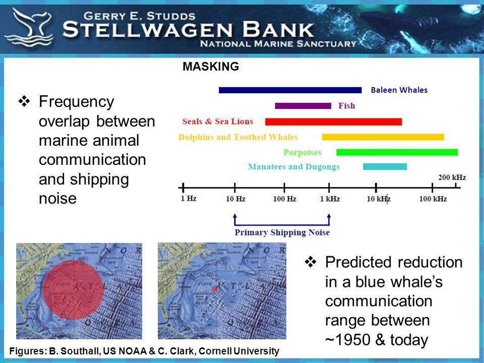 MASKING Figures: B. Southall, US NOAA & C.