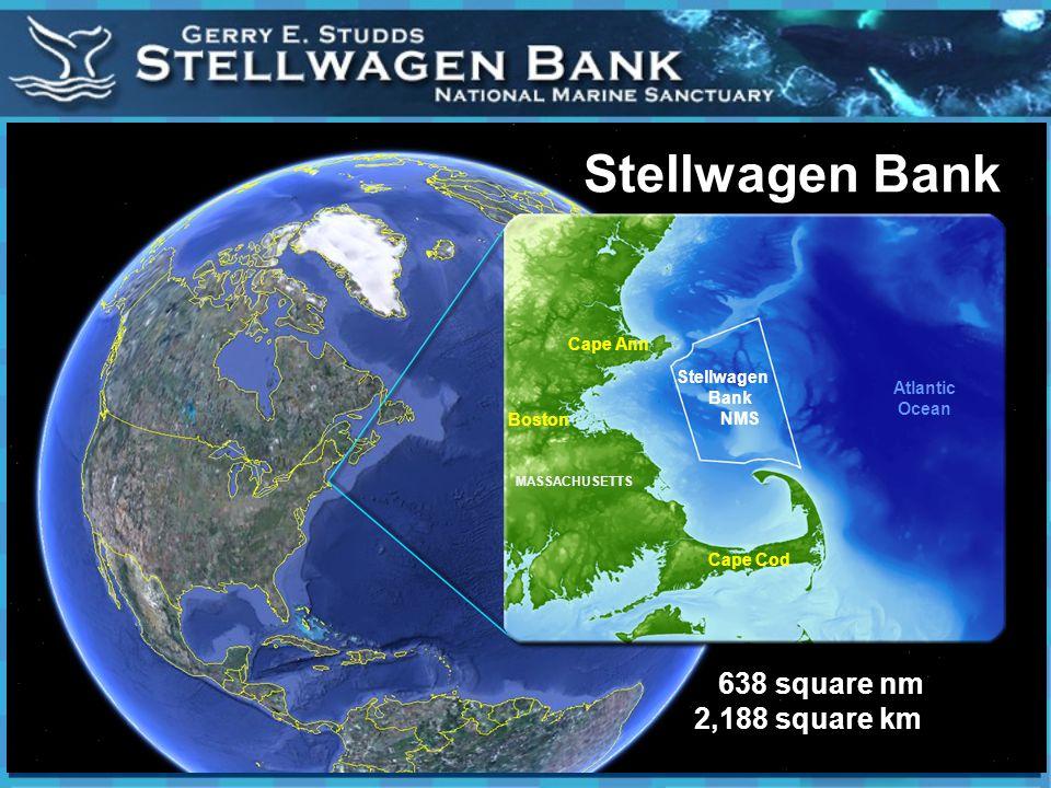Here we are Stellwagen Bank NMS 638 square nm 2,188 square km Boston Cape Ann Cape Cod Atlantic Ocean Stellwagen Bank MASSACHUSETTS