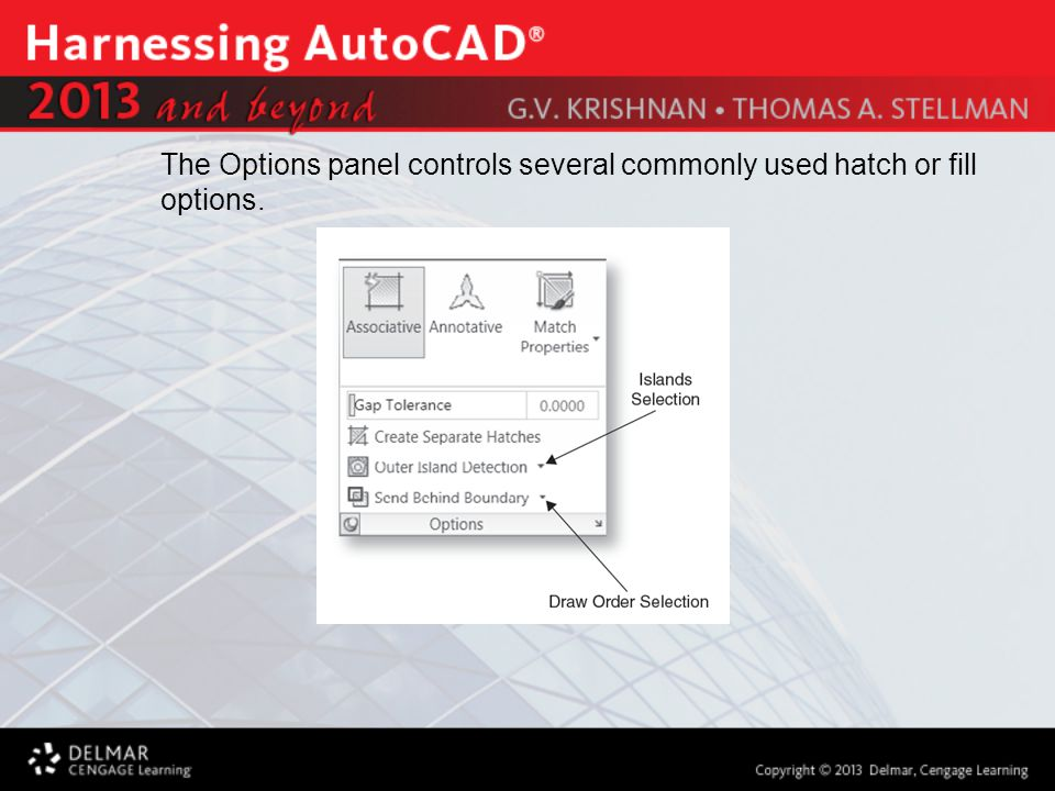 The Options panel controls several commonly used hatch or fill options.