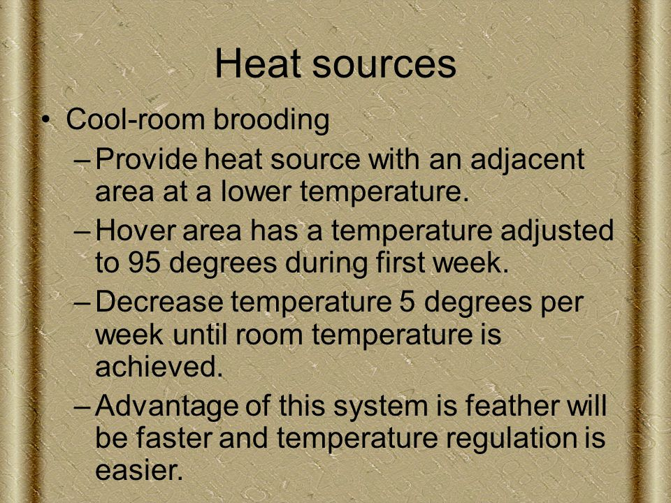 Heat sources Cool-room brooding –Provide heat source with an adjacent area at a lower temperature.