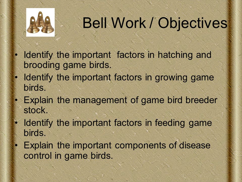 Bell Work / Objectives Identify the important factors in hatching and brooding game birds.
