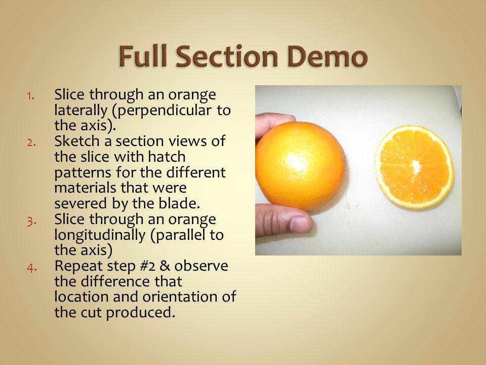 1. Slice through an orange laterally (perpendicular to the axis).