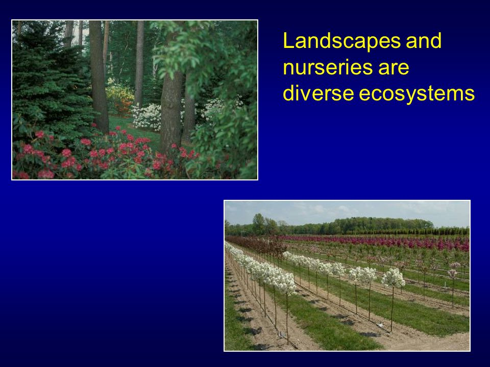 Landscapes and nurseries are diverse ecosystems