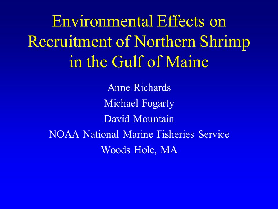 Environmental Effects on Recruitment of Northern Shrimp in the Gulf of Maine Anne Richards Michael Fogarty David Mountain NOAA National Marine Fisheri