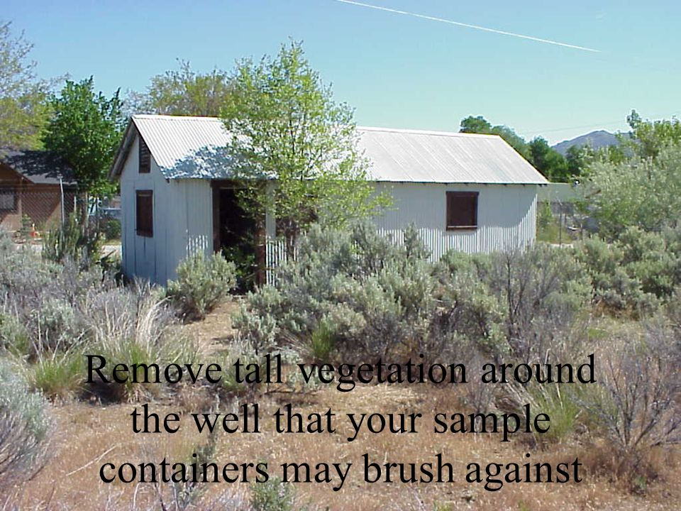 Remove tall vegetation around the well that your sample containers may brush against