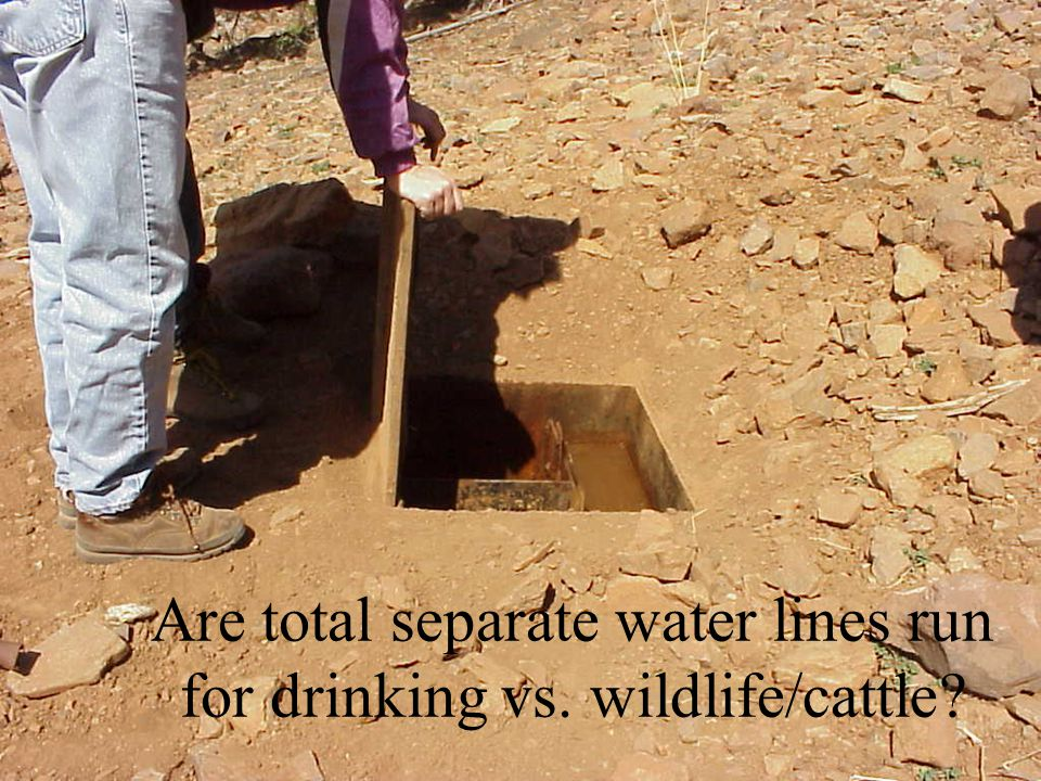 Are total separate water lines run for drinking vs. wildlife/cattle
