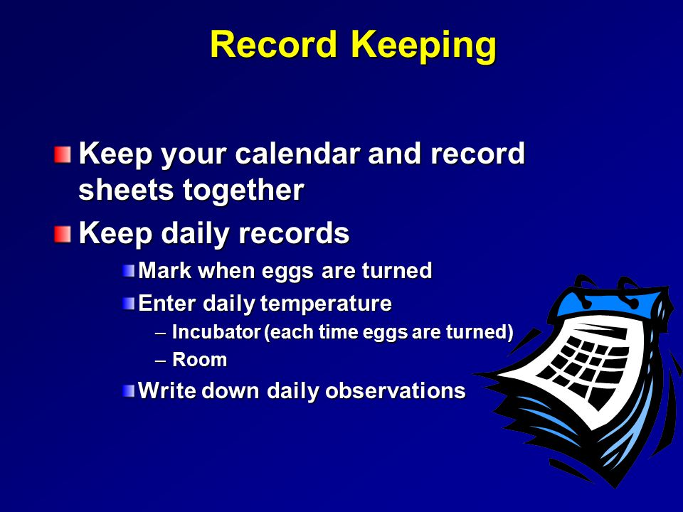 Record Keeping Keep your calendar and record sheets together Keep daily records Mark when eggs are turned Enter daily temperature –Incubator (each time eggs are turned) –Room Write down daily observations
