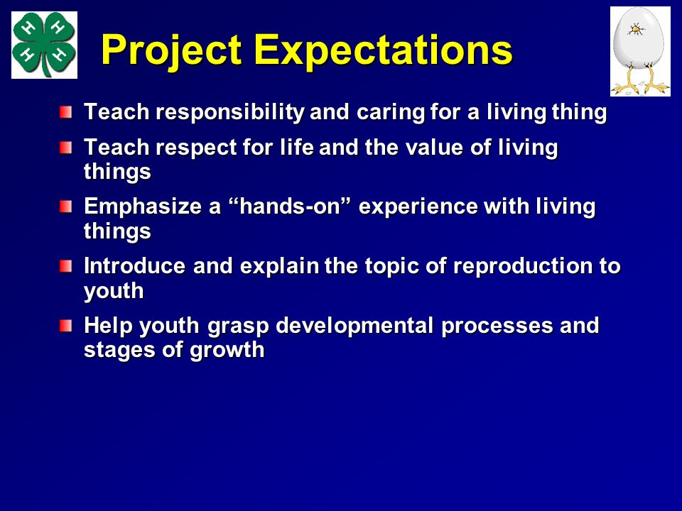 Project Expectations Teach responsibility and caring for a living thing Teach respect for life and the value of living things Emphasize a hands-on experience with living things Introduce and explain the topic of reproduction to youth Help youth grasp developmental processes and stages of growth