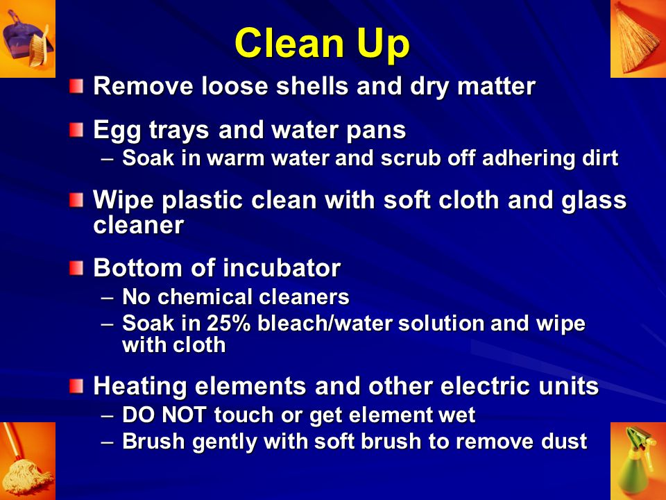 Clean Up Remove loose shells and dry matter Egg trays and water pans –Soak in warm water and scrub off adhering dirt Wipe plastic clean with soft cloth and glass cleaner Bottom of incubator –No chemical cleaners –Soak in 25% bleach/water solution and wipe with cloth Heating elements and other electric units –DO NOT touch or get element wet –Brush gently with soft brush to remove dust
