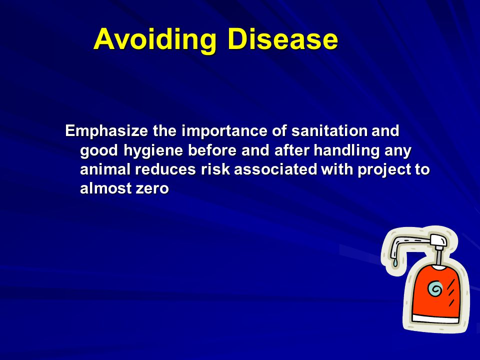 Avoiding Disease Emphasize the importance of sanitation and good hygiene before and after handling any animal reduces risk associated with project to
