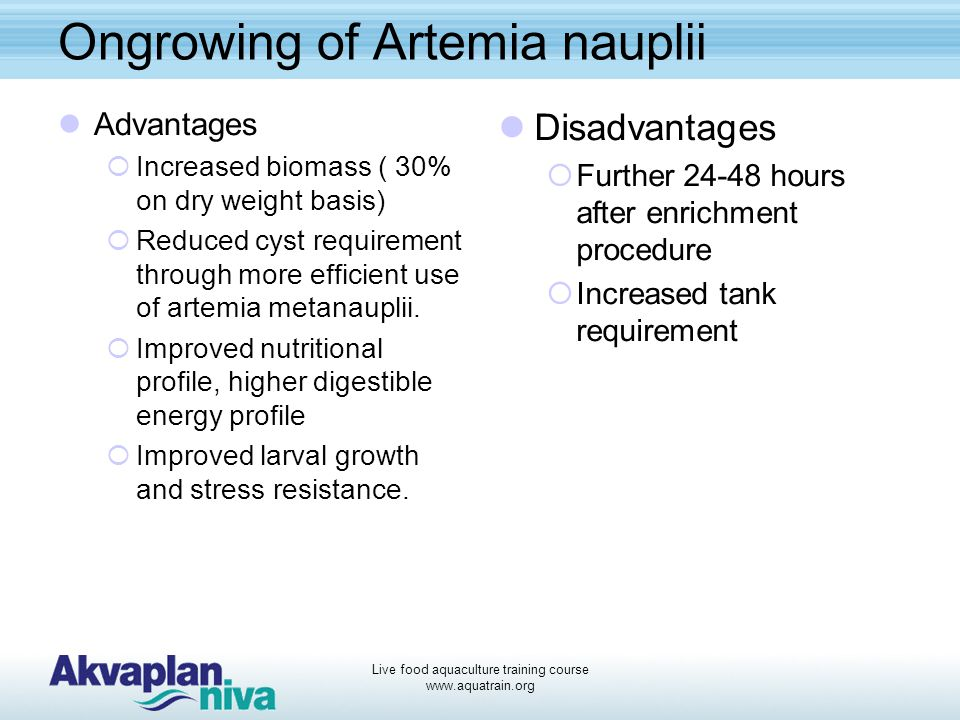 Live food aquaculture training course www.aquatrain.org Ongrowing of Artemia nauplii Advantages  Increased biomass ( 30% on dry weight basis)  Reduced cyst requirement through more efficient use of artemia metanauplii.