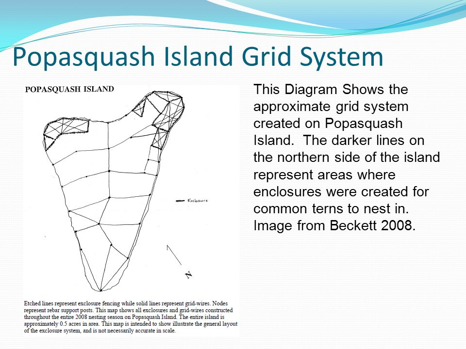 Popasquash Island Grid System This Diagram Shows the approximate grid system created on Popasquash Island. The darker lines on the northern side of th